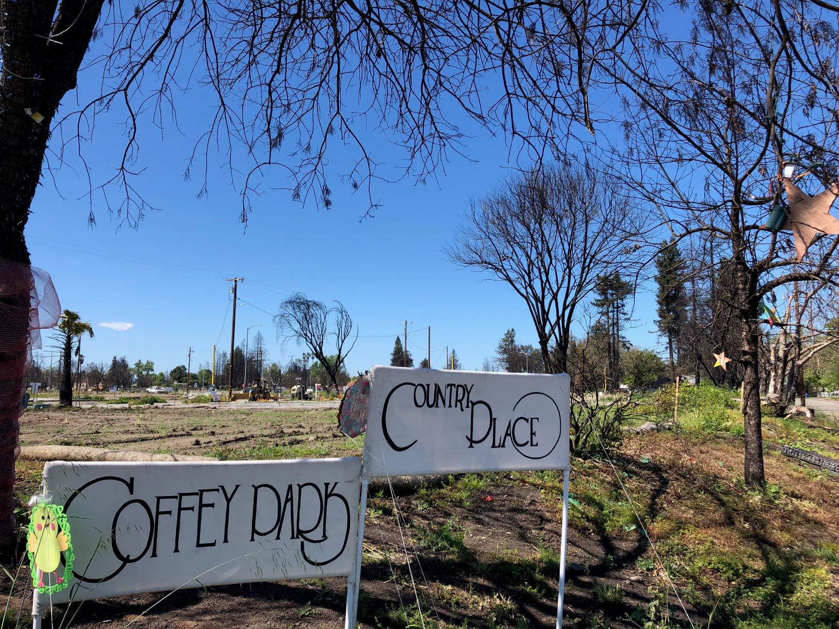 Coffey Park after the 2017 Tubbs Fire