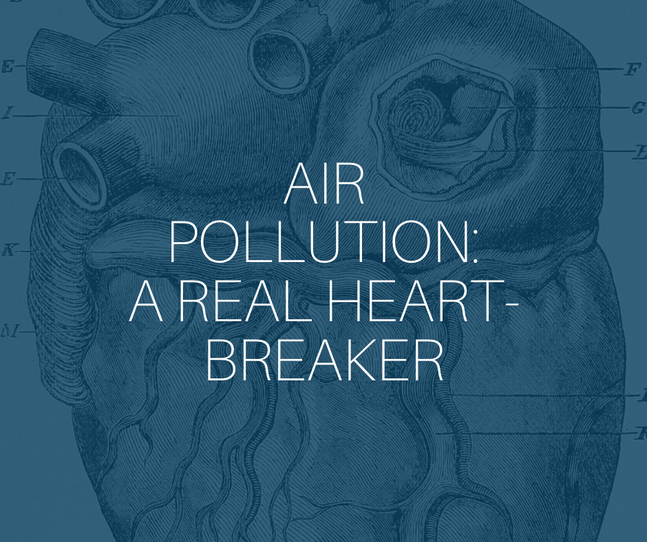 Air pollution article