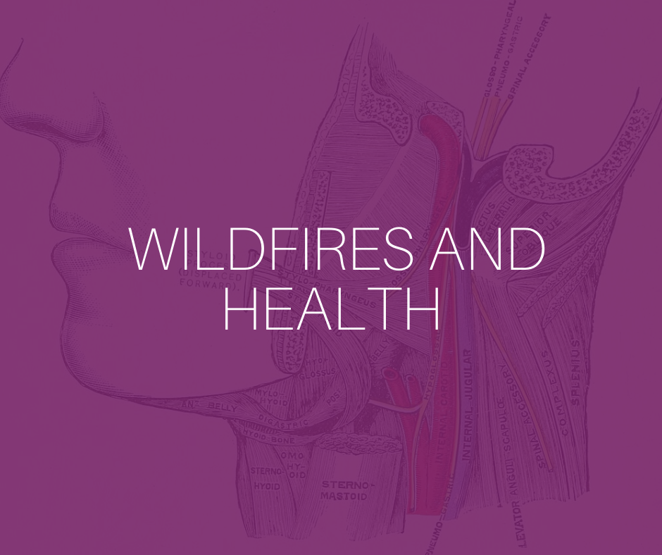 Wildfires and health