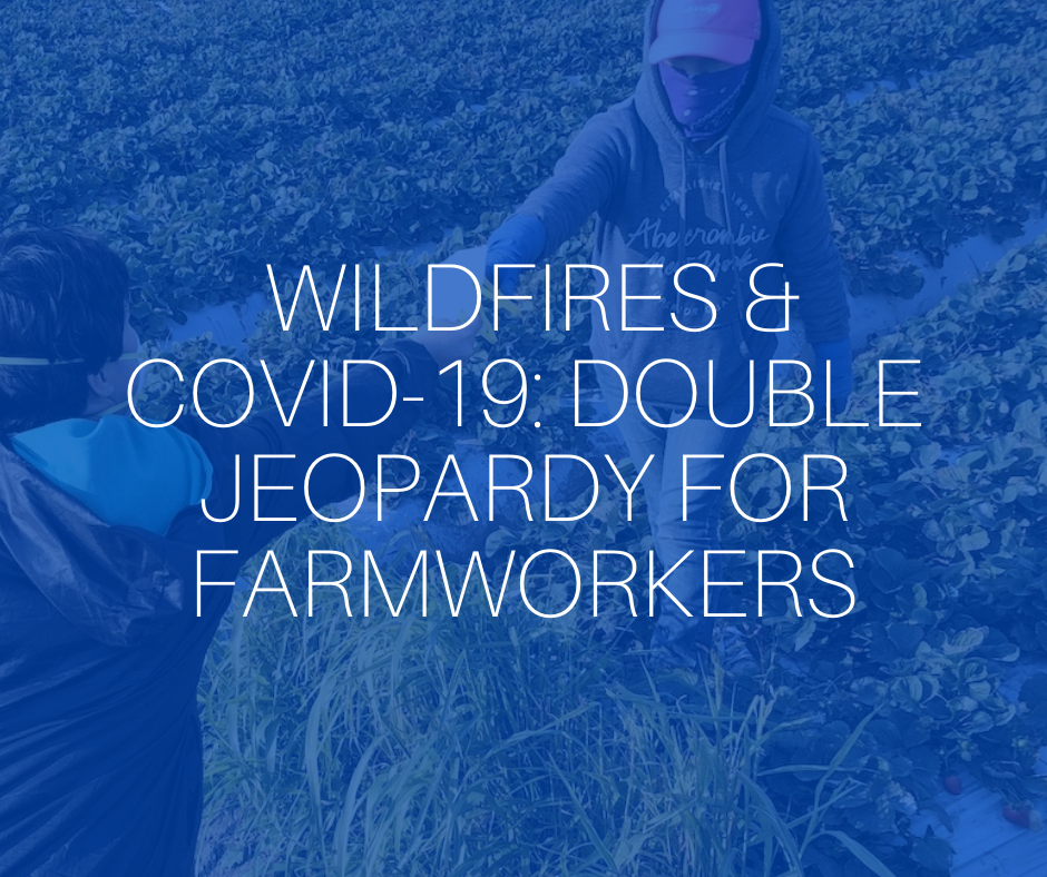 COVID-19, wildfires and farmworkers