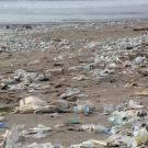 Beach littered with plastic